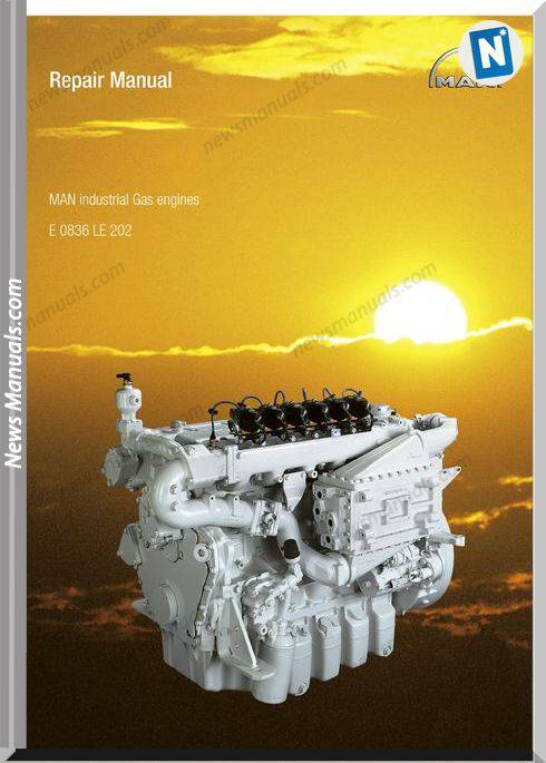 Man Industrial Gas Engines 0836 Le 202 Repair Manual